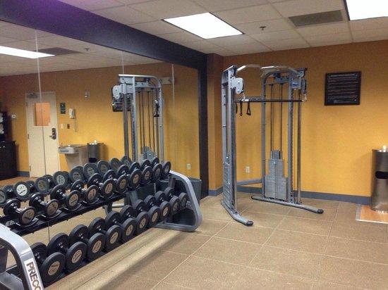 Hilton Garden Inn Nashville Airport: Gym