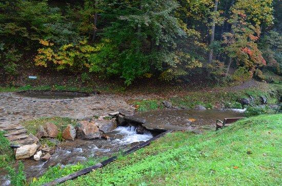 Moonshine Creek Campground : Creek & waterfall