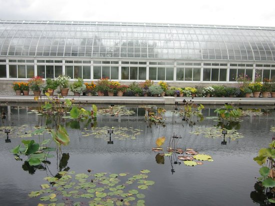 Ny Botanical Garden Oct 2014 Picture Of New York Botanical Garden Bronx Tripadvisor