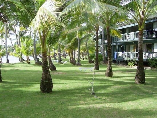 Truk Blue Lagoon Resort : Garden & one of the units