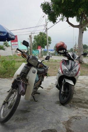 Vietnam Easy Rider: our bikes
