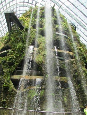 Amara Singapore Hotel: garden by the bay waterfall