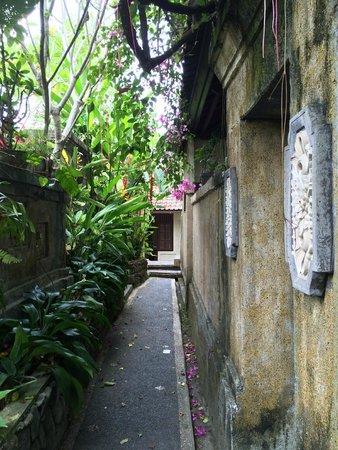 Pondok Permata Homestay: Narrow walkway garden