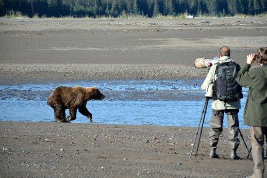 Alaska Homestead Lodge: Up Close