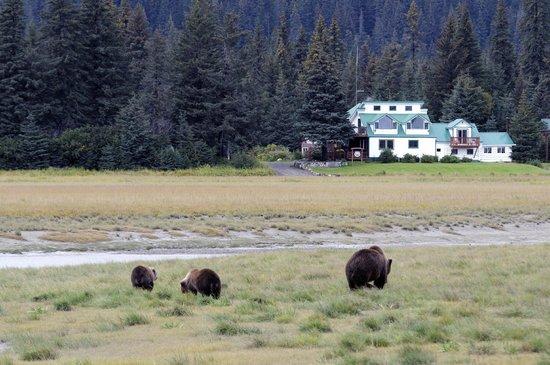 Alaska Homestead Lodge: Heading Home