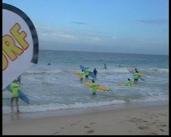 Scarborough Beach: Learn surfing at the beach - why not !!