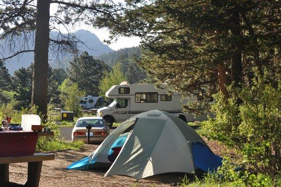 Aspenglen Campground, Rocky Mountain National Park: La nostra piazzola