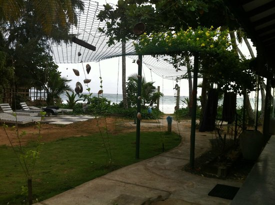 Sira's Chalets Mirissa: View from outside our room