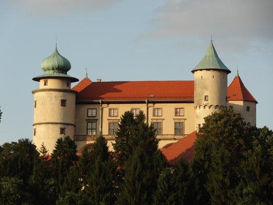 Zamek w Wiśniczu - Muzeum Ziemi Wiśnickiej