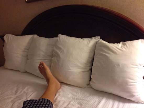 Quality Inn Santa Clara Convention Center : I hate these square cushions guests are given as pillows. You shouldn't be expected to sleep on