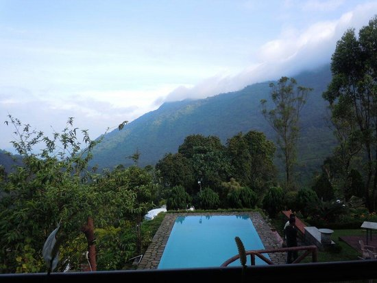 Wild Elephant Eco Friendly Resort: View from the deluxe room