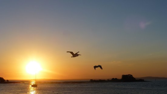 The Mitchells Waterfront Bed & Breakfast: Sunset and Pelicans around the corner