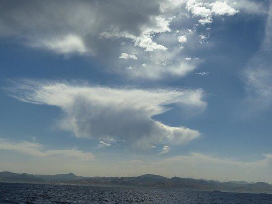 Aldiana Alcaidesa: Whale Watching am Himmel