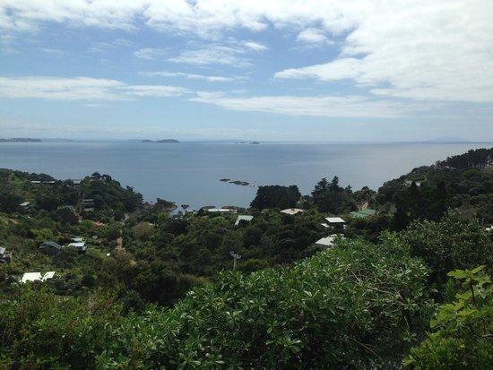 Enclosure Bay: オーシャンビュー