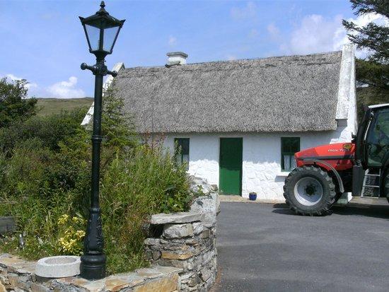 Dan O'Hara's Homestead Farm