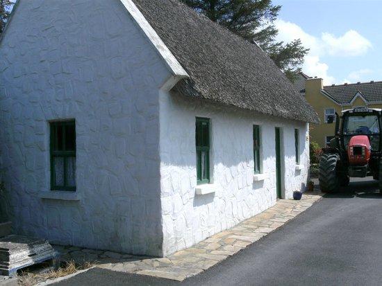 Dan O'Hara's Homestead Farm: Tigeen