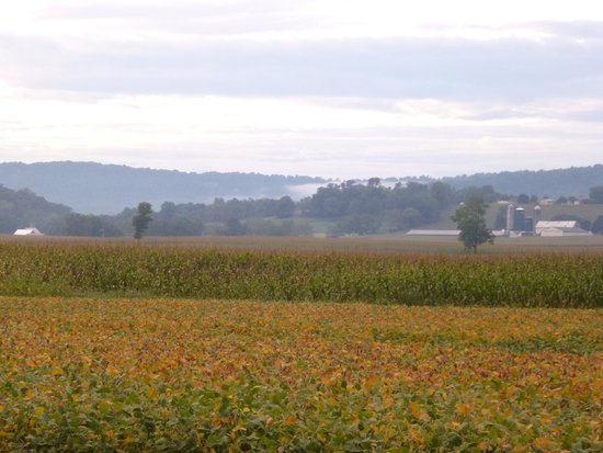 Clearview Farm Bed and Breakfast: PA countryside