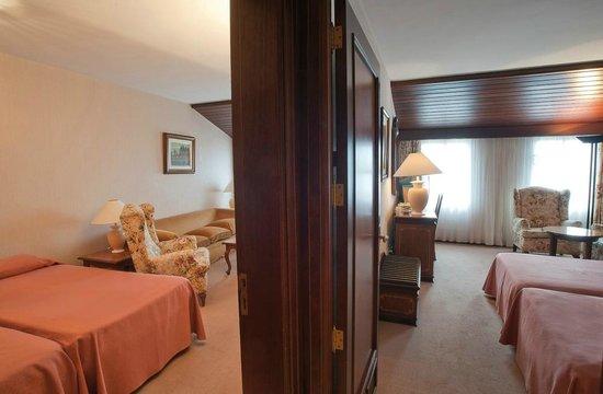Hotel Riu Olot: Room