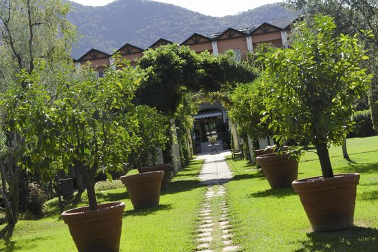 Iseo Lago Hotel: Il nostro giardino