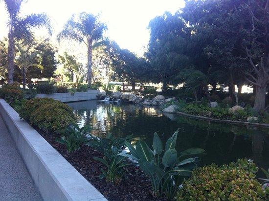 Doubletree by Hilton Anaheim - Orange County: Laguna de la terraza