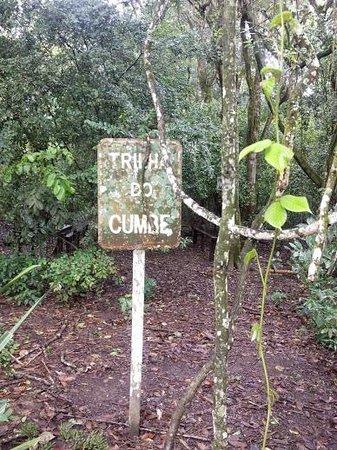 Parque Estadual Mata do Pau-Ferro