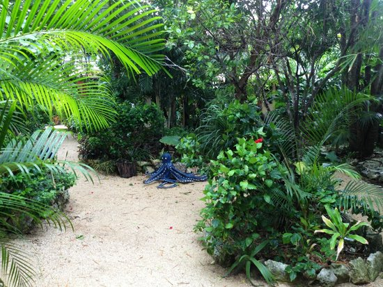 El Jardin de Frida: Botanical Garden