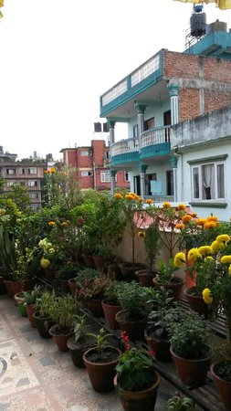Blue Mountain Homestay: balcon