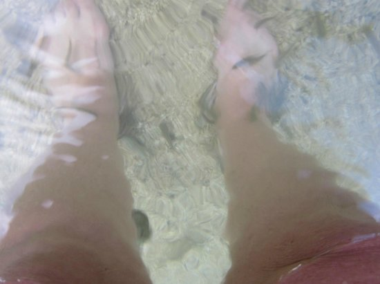 Fishy pedicure in the Sea of Galilee at Ron Beach HOtel