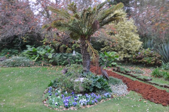 Cedar Garden Bed & Breakfast: Garden