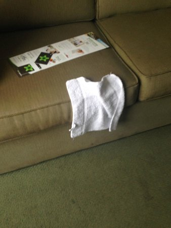 Extended Stay America - Dallas - Plano : This washcloth was like this on the sofa when we walked in!