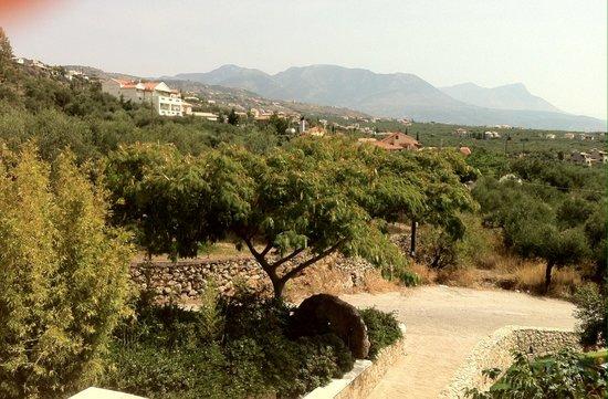 Imelda Apartments Guesthouse Reviews Photos Stoupa Greece Tripadvisor