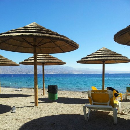 SPNI Eilat Field School: Пляж