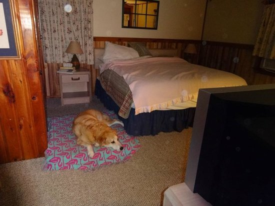 The Beaches Motel & Cottages: King bed and room for dog bed