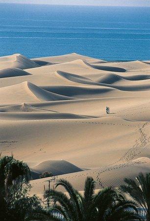 Hotel Riu Palace Maspalomas: Maspalomas dunes