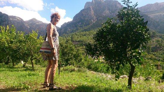 Ecovinyassa: Prachtige uitzichten
