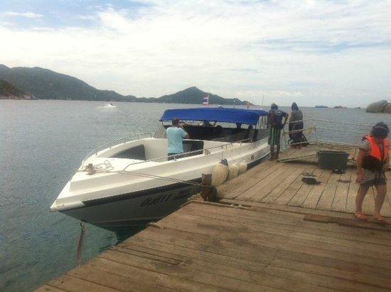 In Sea Speedboat : The boat