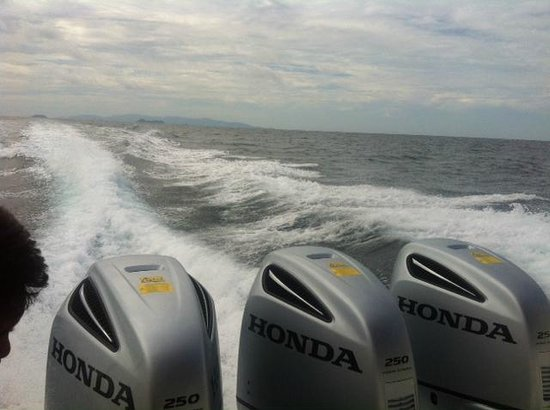 In Sea Speedboat: The boat