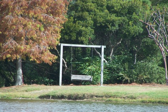 James Island County Park Campground & Cottages: swing with a view
