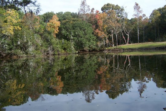 James Island County Park Campground & Cottages: lake