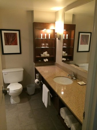 Delta Saguenay Hotel : bagno