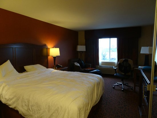 Hampton Inn Idaho Falls/Airport : King Room