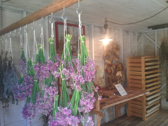 Ohio Herb Education Center: Drying Shed