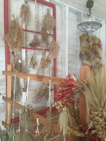 Ohio Herb Education Center: Drying Herbs