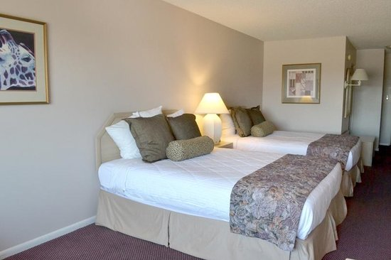 Safari Inn Downtown: Room with Two Queen Beds