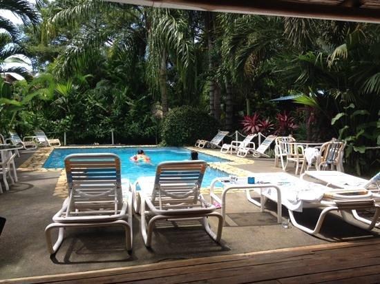 Zula Inn Aparthotel: the zula inn pool...