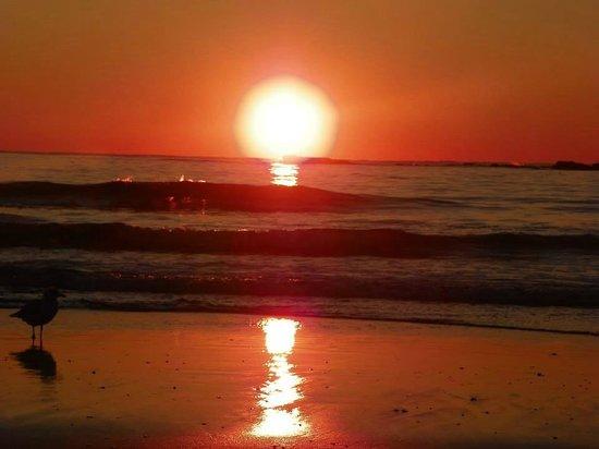Lafayette's Oceanfront Resort : sunrise