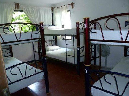Haina Hostal : Esta muy bien ubicado y puedes compartir las habitaciones con otras personas