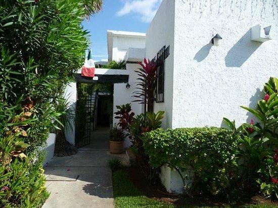 Haina Hostal : Esta es la entrada y puedes disfrutar de la excelente vegetación