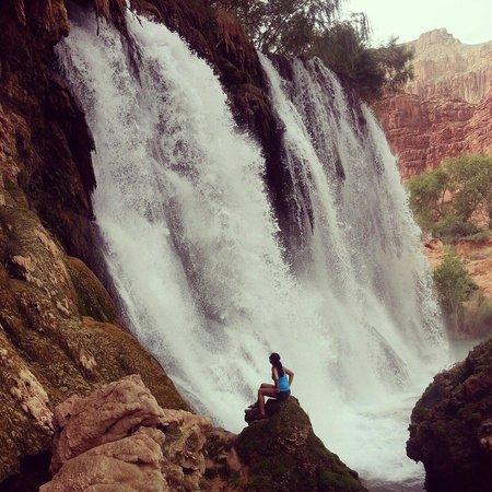 Havasu Falls Campground: Amazing!