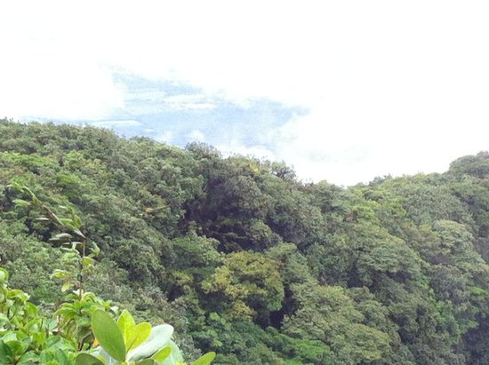 Mombacho Volcano : View from Mombacho